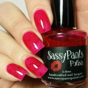 wpid-sassy-pants-polish-ruby-slippers-1.jpg.jpeg